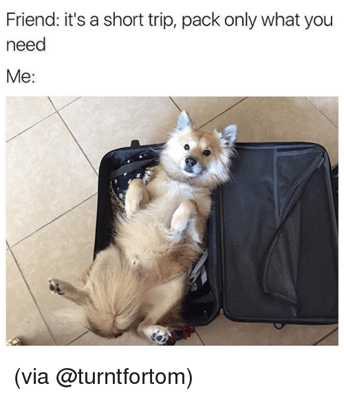 memes: Friend: it's a short trip, pack only what you  need  Me (via @turntfortom)