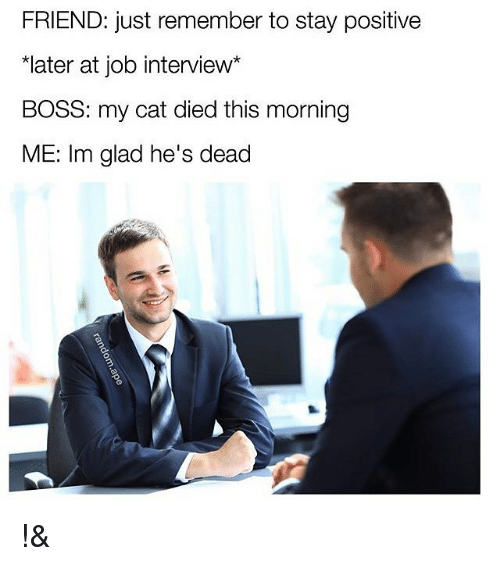Job Interview, Memes, and 🤖: FRIEND: just remember to stay positive  *later at job interview  BOSS: my cat died this morning  ME: Im glad he's dead !&