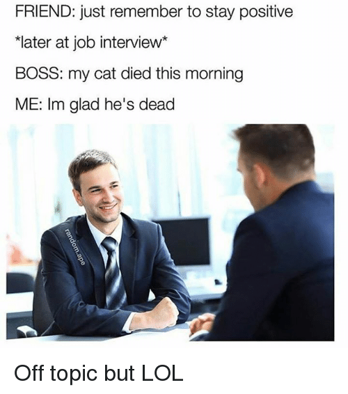 Job Interview, Cat, and Job: FRIEND: just remember to stay positive  *later at job interview*  BOSS: my cat died this morning  ME: Im glad he's dead Off topic but LOL