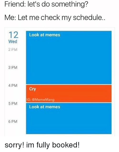 Let Me Check: Friend: let's do something?  Me: Let me check my schedule.  12  Look at memes  Wed  2 PM  3 PM  4 PM  Cry  IG: @MemeMang  5 PM  Look at memes  6 PM sorry! im fully booked!