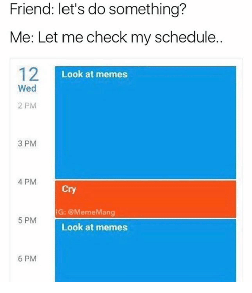 Let Me Check: Friend: let's do something?  Me: Let me check my schedule.  Look at memes  Wed  2 PM  3 PM  4 PM  Cry  G: @MemeMang  5 PM  Look at memes  6 PM