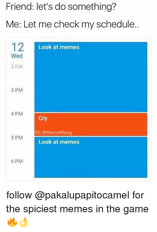 Memes, The Game, and Game: Friend: let's do something?  Me: Let me check my schedule.  Look at memes  Wed  2 PM  3 PM  4 PM  Cry  IG: @MemeMang  5 PM  Look at memes  6 PM follow @pakalupapitocamel for the spiciest memes in the game 🔥👌