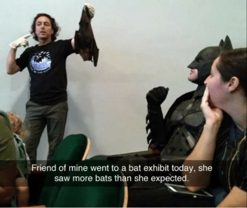 Exhibit: Friend of mine went to a bat exhibit today, she  saw more bats than she expected