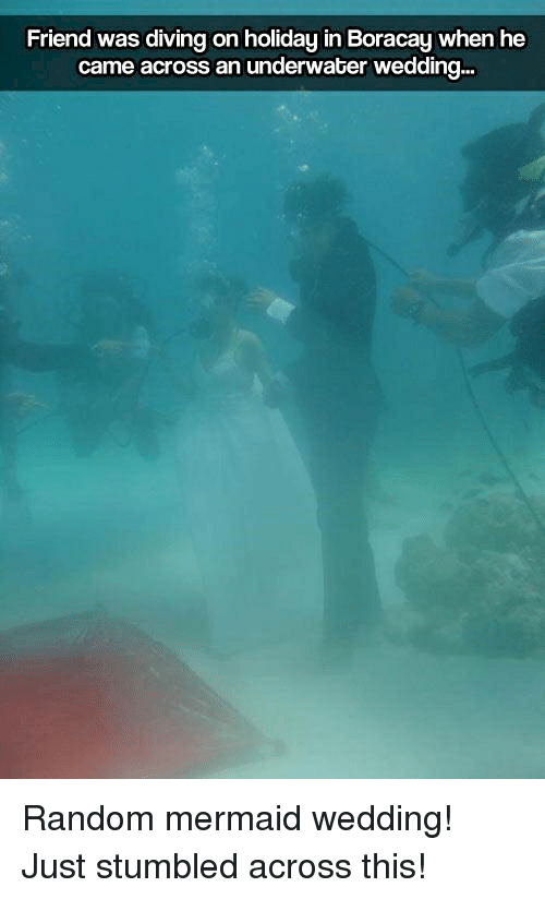 Wedding, Thathappened, and Random: Friend was diving on holiday in Boracay when he  came across an underwater wedding...