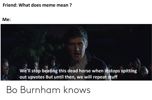 What Does Meme Mean: Friend: What does meme mean?  Ме:  Well stop beating this dead horse when it stops spitting  out upvotes But until then, we will repeat stuff Bo Burnham knows