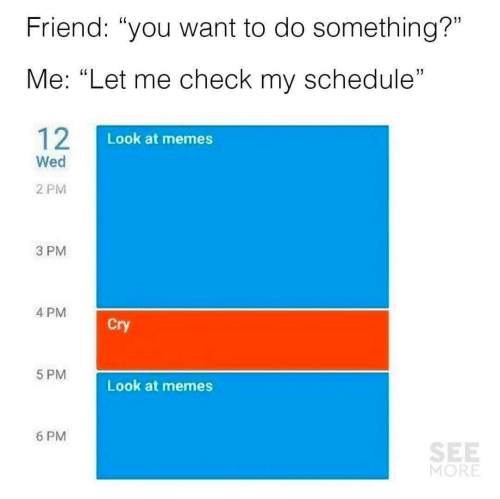 """Let Me Check: Friend: """"you want to do something?""""  Me: """"Let me check my schedule""""  12  Look at memes  Wed  2 PM  3 PM  4 PM  Cry  5 PM  Look at memes  6 PM  SEE  MORE"""