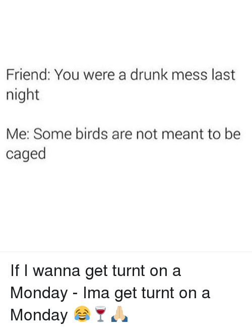 get turnt: Friend: You were a drunk mess last  night  Me: Some birds are not meant to be  caged If I wanna get turnt on a Monday - Ima get turnt on a Monday 😂🍷🙏🏼
