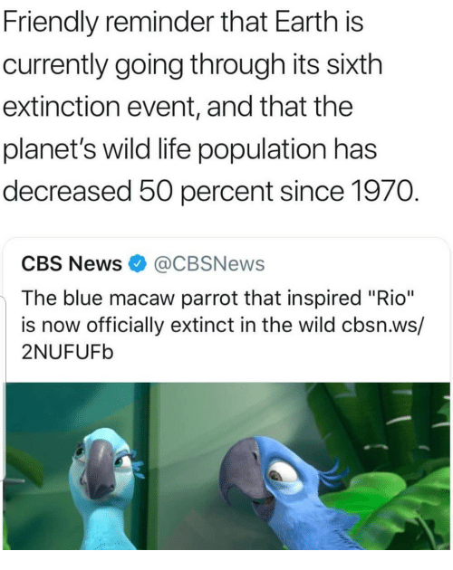 "Life, Memes, and News: Friendly reminder that Earth is  currently going through its sixth  extinction event, and that the  planet's wild life population has  decreased 50 percent since 1970  CBS News@CBSNews  The blue macaw parrot that inspired ""Rio""  is now officially extinct in the wild cbsn.ws/  2NUFUFb"