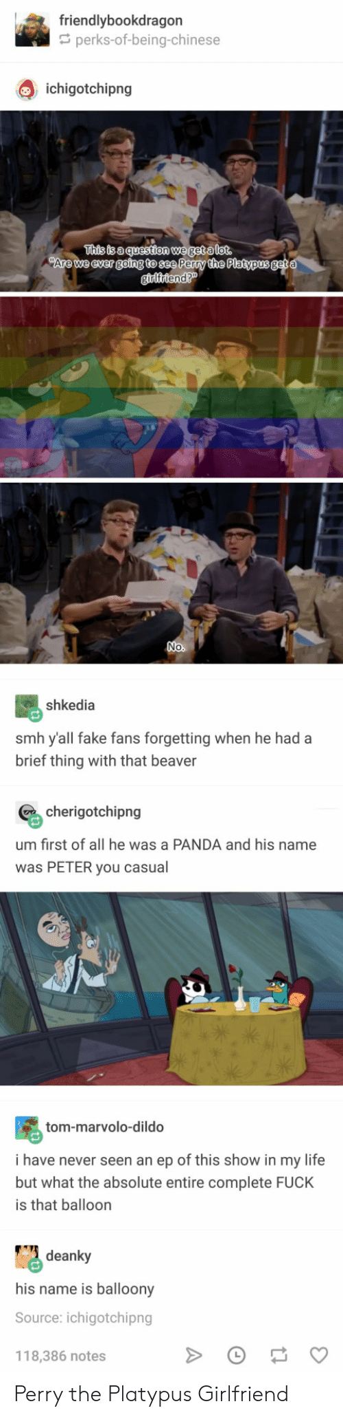 beaver: friendlybookdragon  perks-of-being-chinese  Q ichigotchipng  This is a questien we getalot.  Are we ever going to see Perry the Platypus  No  shkedia  smh y'all fake fans forgetting when he had a  brief thing with that beaver  cherigotchipng  um first of all he was a PANDA and his name  was PETER you casual  tom-marvolo-dildo  i have never seen an ep of this show in my life  but what the absolute entire complete FUCK  is that balloon  deanky  his name is balloony  Source: ichigotchipng  118,386 notes Perry the Platypus Girlfriend