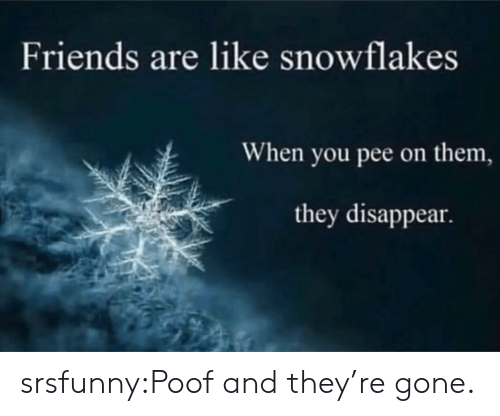 snowflakes: Friends are like snowflakes  When you pee on them,  they disappear. srsfunny:Poof and they're gone.
