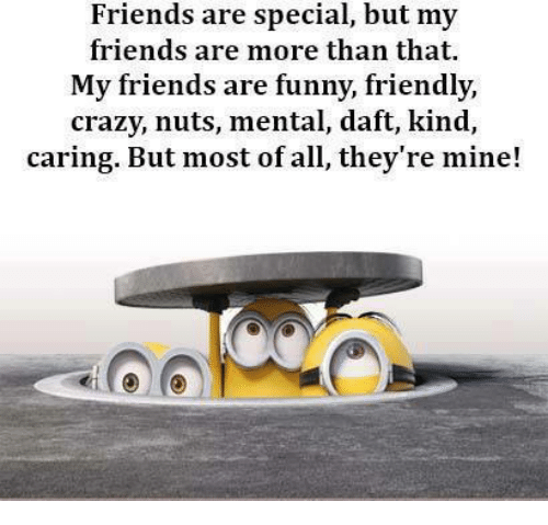 funny friends: Friends are special, but my  friends are more than that.  My friends are funny, friendly,  crazy, nuts, mental, daft, kind,  ring. But most of all, they're mine!