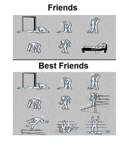 Best Friend, Friends, and Funny: Friends  Best Friends