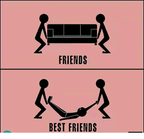 Best Friend, Friends, and Memes: FRIENDS  BEST FRIENDS