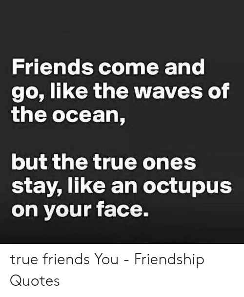 True Friends Meme: Friends come and  go, like the waves of  the ocean,  but the true ones  stay, like an octupus  on your face. true friends You - Friendship Quotes