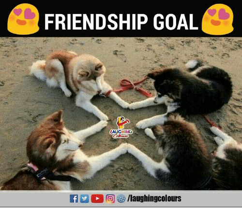 Goal, Friendship, and Indianpeoplefacebook: FRIENDSHIP GOAL  AUGHING