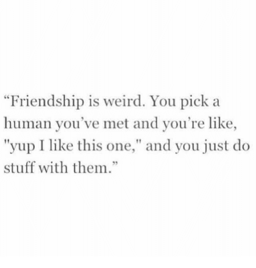 """Do Stuff: Friendship is weird. You pick a  human you've met and you're like,  """"yup I like this one,"""" and you just do  stuff with them.""""  92"""