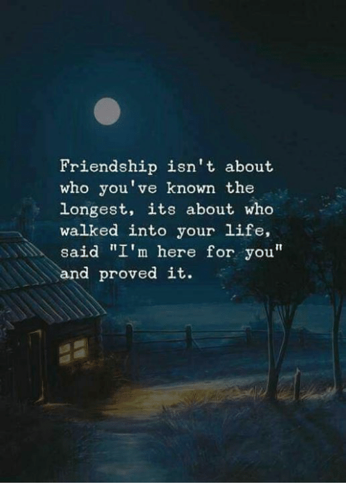 """Im Here For You: Friendship isn't about  who you've known the  longest, its about who  walked into your life,  said """"I'm here for you""""  and proved it."""