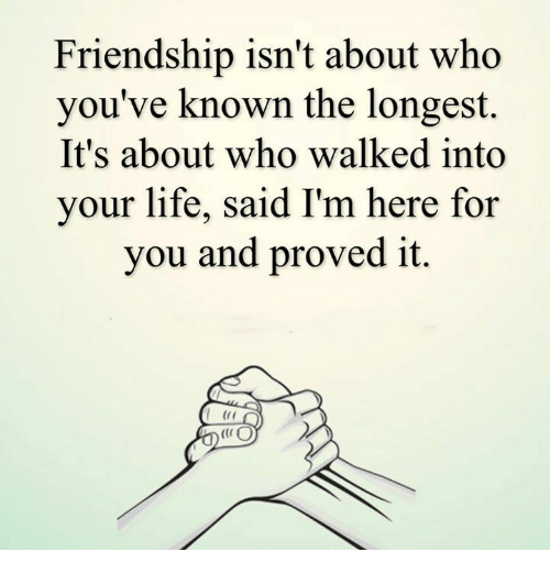 memes: Friendship isn't about who  you've known the longest.  It's about who walked into  your life, said I'm here for  you and proved it.  (CO