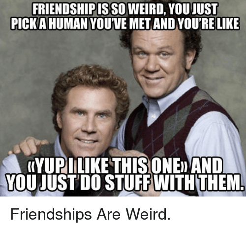 Friendshipis: FRIENDSHIPIS SO WEIRD, YOU JUST  PICKA HUMAN YOUVE MET AND YOU'RE LIKE  (YUPILIKE THISONE AND  YOUJUST DO STUFF WITHTHEM <p>Friendships Are Weird.</p>