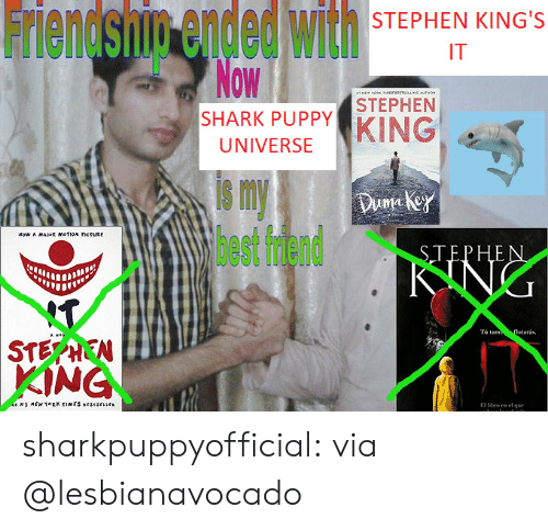 kings: Friendsnin ended with  Now  STEPHEN KING'S  IT  M  ORK esvesysUNG MTHO  STEPHEN  SHARK PUPPY  KING  UNIVERSE  s my  lhest fdend  Duma key  Now A MAJR mofioN ctURE  STEPHEN  KING  T  $TEPHEN  KING  Tà tam  flotarás.  Hite  MEW TORK TIMES srsescrs  ro en el que  E sharkpuppyofficial:  via @lesbianavocado