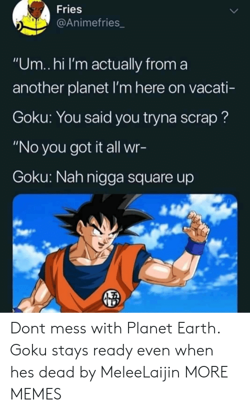 "Square Up: Fries  @Animefries_  ""Um..hi I'm actually from a  another planet I'm here on vacati-  Goku: You said you tryna scrap?  ""No you got it all wr-  Goku: Nah nigga square up Dont mess with Planet Earth. Goku stays ready even when hes dead by MeleeLaijin MORE MEMES"