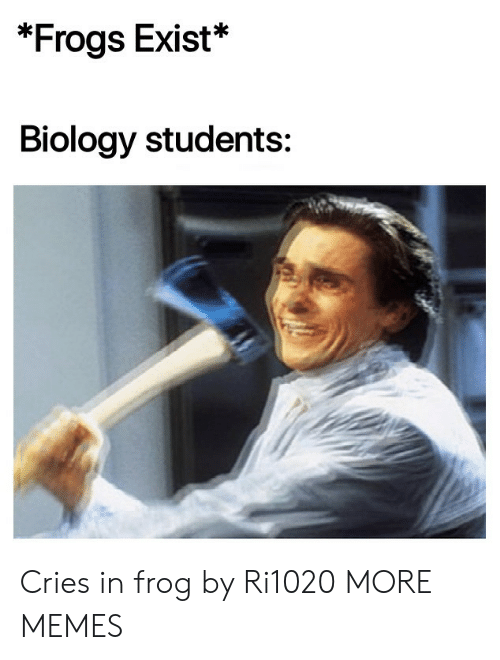Biology: *Frogs Exist*  Biology students: Cries in frog by Ri1020 MORE MEMES