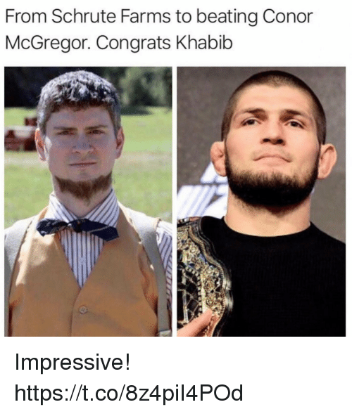 mcgregor: From Schrute Farms to beating Conor  McGregor. Congrats Khabib Impressive! https://t.co/8z4piI4POd