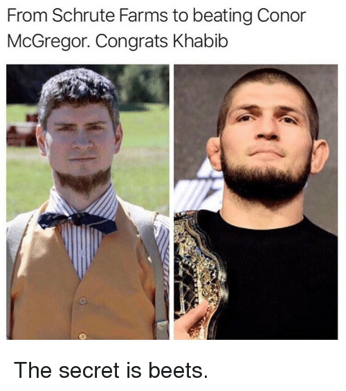 mcgregor: From Schrute Farms to beating Conor  McGregor. Congrats Khabib The secret is beets.