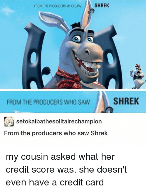Shrekli: FROM THE PRODUCERS WHO SAW  SHREK  FROM THE PRODUCERS WHO SAW  SHREK  시 setokalbathesolitare champion  From the producers who saw Shrek my cousin asked what her credit score was. she doesn't even have a credit card