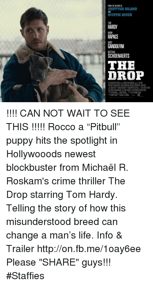"Blockbuster, Crime, and Memes: FROM THE  SHUTTER ISLAND  MYSTIC RIVER  HARDY  RAPACE  NDOLANI  SCHOENAERTS  THE  DROP !!!! CAN NOT WAIT TO SEE THIS !!!!!  Rocco a ""Pitbull"" puppy hits the spotlight in Hollywooods newest blockbuster from Michaël R. Roskam's crime thriller The Drop starring Tom Hardy. Telling the story of how this misunderstood breed can change a man's life.  Info & Trailer http://on.fb.me/1oay6ee  Please ""SHARE"" guys【ツ】!!! #Staffies"