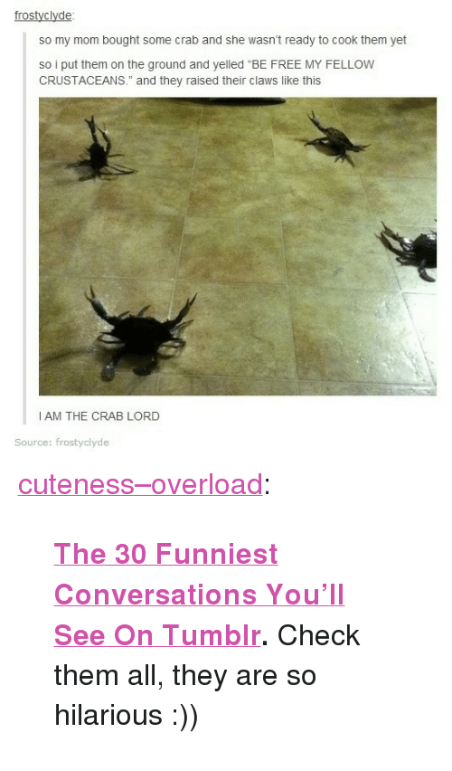 "Tumblr, Blog, and Free: frostyclyde  o y o bought ome crab and she wasnt reay 1ocoax en et  so i put them on the ground and yelled ""BE FREE MY FELLOW  CRUSTACEANS."" and they raised their claws like this  I AM THE CRAB LORD  Source: frostyclyde <p><a href=""http://cuteness-overload.com/post/129752528128/the-30-funniest-conversations-youll-see-on"" class=""tumblr_blog"">cuteness–overload</a>:</p><blockquote><p> <b><a href=""http://goo.gl/ySYALT"">The 30 Funniest Conversations You'll See On Tumblr</a>. </b>Check them all, they are so hilarious :))<br/></p></blockquote>"