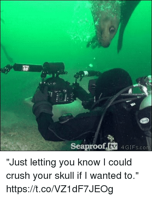 """Crush, Memes, and Skull: fstV IFS.com  Seaproo """"Just letting you know I could crush your skull if I wanted to."""" https://t.co/VZ1dF7JEOg"""