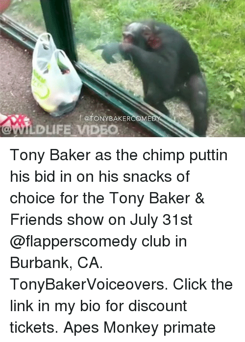 Chimp: ftoNYBAKER  @fONYBAKER  WILDLIFE MDEO Tony Baker as the chimp puttin his bid in on his snacks of choice for the Tony Baker & Friends show on July 31st @flapperscomedy club in Burbank, CA. TonyBakerVoiceovers. Click the link in my bio for discount tickets. Apes Monkey primate