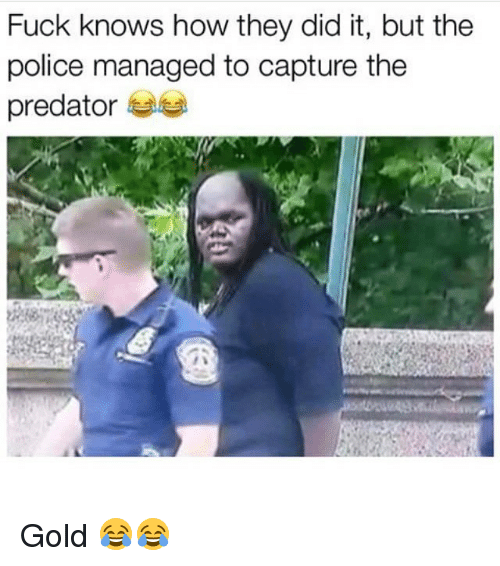 Memes, Police, and Fuck: Fuck knows how they did it, but the  police managed to capture the  predator Gold 😂😂