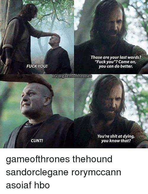 "Fuck You, Hbo, and Memes: FUCK YOU!  CUNT!  Those are your last words?  ""Fuck you""? Come on,  you can do better.  GIOrganemofthrones  You're shit at dying,  you know that? gameofthrones thehound sandorclegane rorymccann asoiaf hbo"