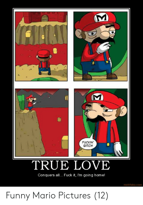 mario pictures: FUCKIN  BITCH  TRUE LOVE  Conquers all.. Fuck it, I'm going home!  motifake.com Funny Mario Pictures (12)