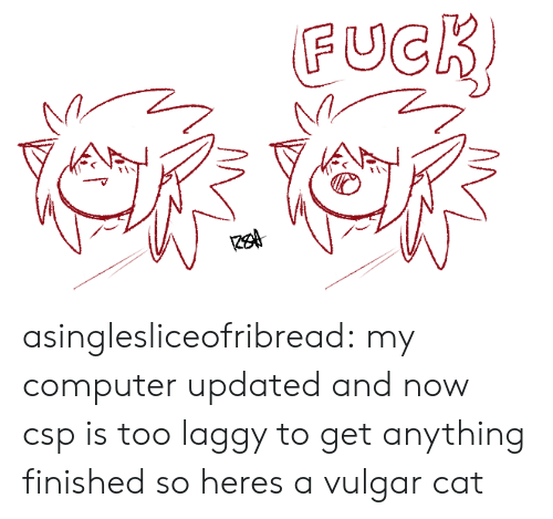 vulgar: FUCR asinglesliceofribread:  my computer updated and now csp is too laggy to get anything finished so heres a vulgar cat