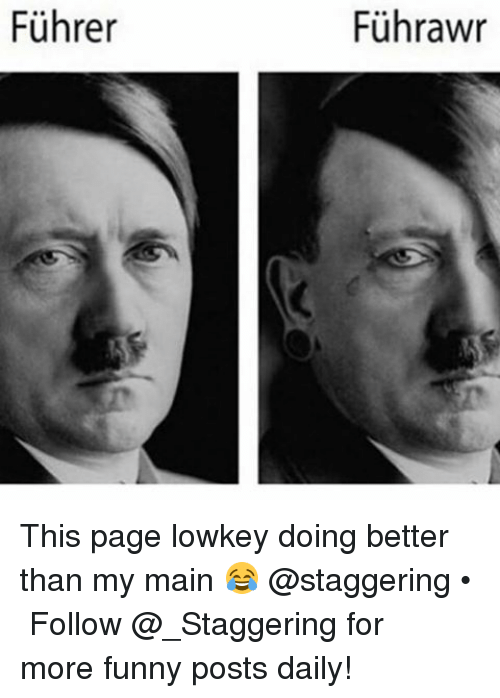 Memes, 🤖, and Page: Fuhrer  Fuhrawr This page lowkey doing better than my main 😂 @staggering • ➫➫➫ Follow @_Staggering for more funny posts daily!