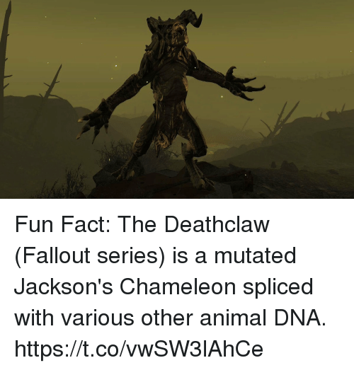 25+ Best Memes About Deathclaw Fallout | Deathclaw Fallout ...