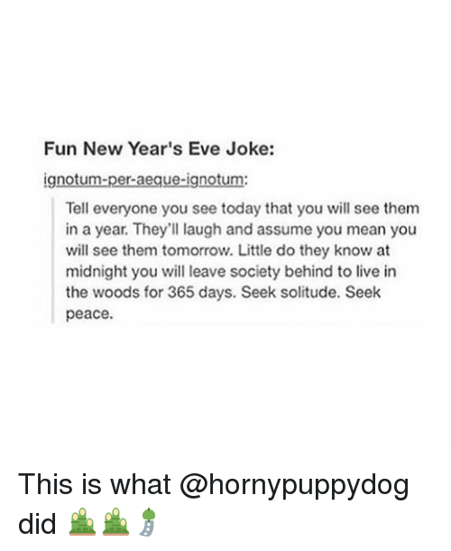 Fun New Year\'s Eve Joke Gn Tell Everyone You See Today That You Will ...