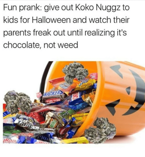 Fun Prank: Fun prank: give out Koko Nuggz to  kids for Halloween and watch their  parents freak out until realizing it's  chocolate, not weed