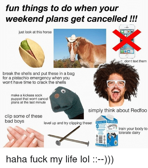 puppeteer: fun things to do when your  weekend plans get cancelled !!!  just look at this horse  dont text them  break the shells and put these in a bag  for a pistachio emergency when you  won t have time to crack the shells  make a kickass sock  puppet that wonrt cancel  plans at the last minute  simply think about Redfoo  clip some of these  bad boys  level up and try clipping these!  train your body to  tolerate dairy haha fuck my life lol ::--)))