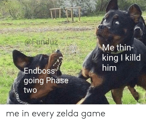 Funny, Game, and Zelda: @Funduz  Me thin-  king I killd  him  Endboss  going Phase  two me in every zelda game