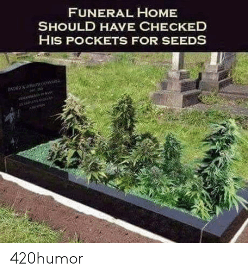 pockets: FUNERAL HOME  SHOULD HAVE CHECKED  HIS POCKETS FOR SEEDS 420humor