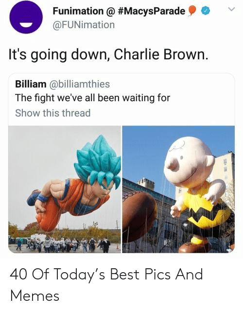 going down: Funimation @ #MacysParade  @FUNimation  It's going down, Charlie Brown.  Billiam @billiamthies  The fight we've all been waiting for  Show this thread 40 Of Today's Best Pics And Memes