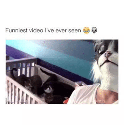 Funniest Meme You Have Seen : Funniest video i ve ever seen videos meme on sizzle