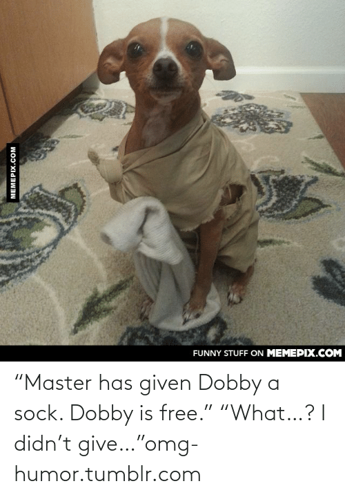 """Master Has Given Dobby A Sock: FUNNY STUFF ON MEMEPIX.COM  MEMEPIX.COM """"Master has given Dobby a sock. Dobby is free."""" """"What…? I didn't give…""""omg-humor.tumblr.com"""