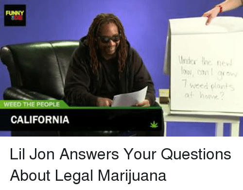 Lil Jon: FUNNY  THE PEOPL  CALIFORNIA  7 weed plant Lil Jon Answers Your Questions About Legal Marijuana