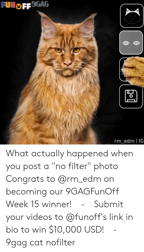 "EDM: FUNOFF 9GAG  0  rm_edm IG What actually happened when you post a ""no filter"" photo⠀ Congrats to @rm_edm on becoming our 9GAGFunOff Week 15 winner!⠀ -⠀ Submit your videos to @funoff's link in bio to win $10,000 USD!⠀ -⠀ 9gag cat nofilter"