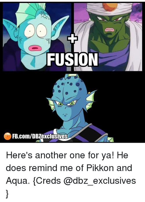 Memes, 🤖, and Fusion: FUSION  FB.com/DB exclusives Here's another one for ya! He does remind me of Pikkon and Aqua. {Creds @dbz_exclusives }